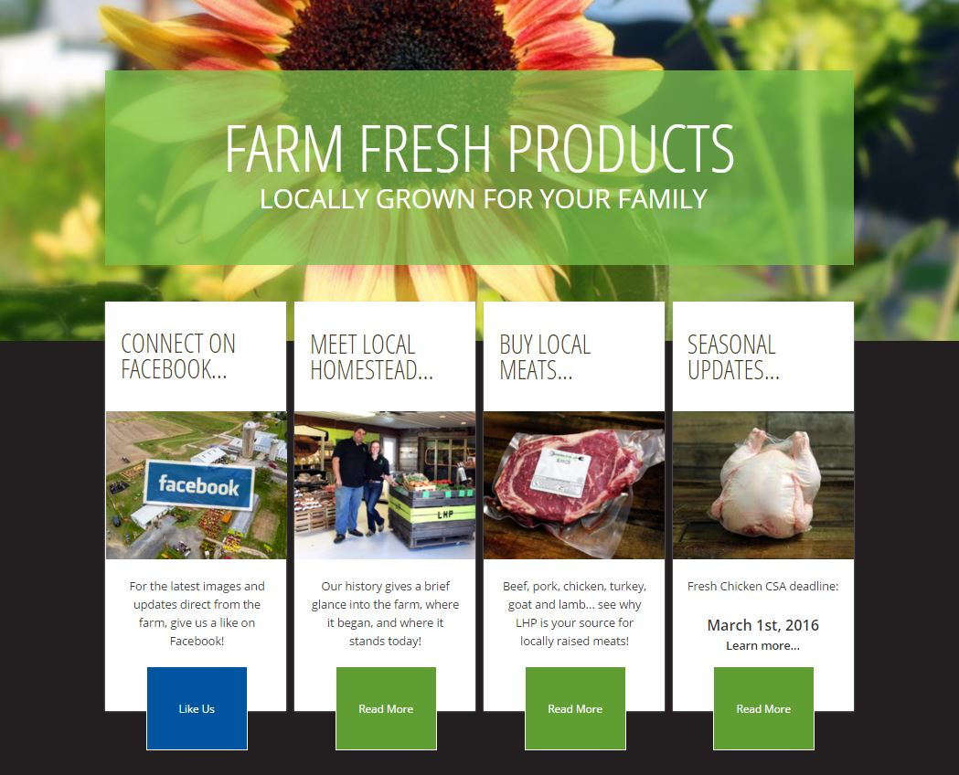Local Homestead Products Website | Website GURL