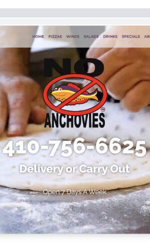 No Anchovies USA Pizza WordPress Website GURL